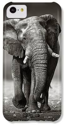 Elephant IPhone 5c Cases