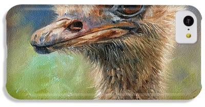 Ostrich iPhone 5C Cases