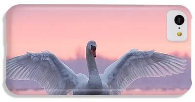 Swan iPhone 5C Cases