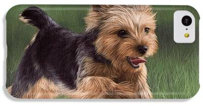 Yorkshire Terrier IPhone 5c Cases