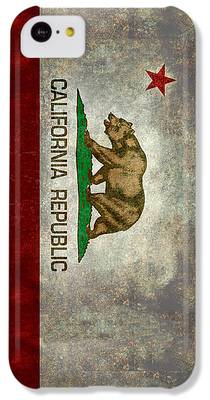 Brown Bear iPhone 5C Cases
