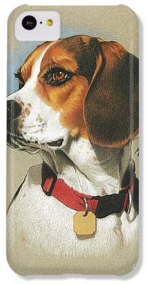 Beagle IPhone 5c Cases