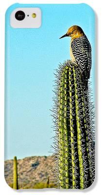 Woodpecker iPhone 5C Cases