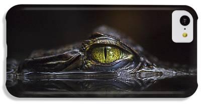 Alligator IPhone 5c Cases