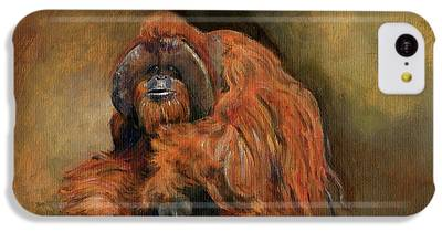 Orangutan iPhone 5C Cases