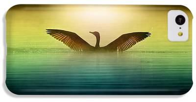 Goose iPhone 5C Cases