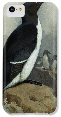 Razorbill iPhone 5C Cases