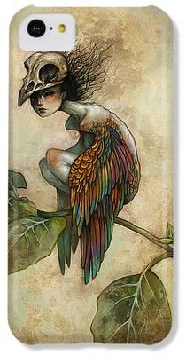 Birds iPhone 5C Cases