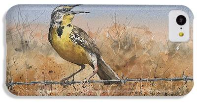 Meadowlark iPhone 5C Cases