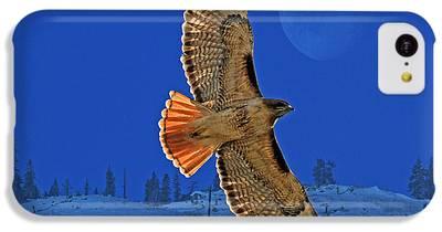 Hawk iPhone 5C Cases
