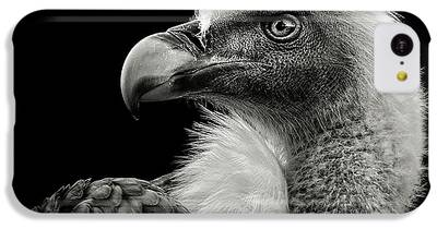 Griffon iPhone 5C Cases