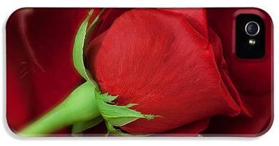 Rose IPhone 5s Cases