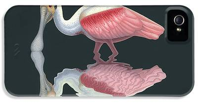 Spoonbill IPhone 5s Cases
