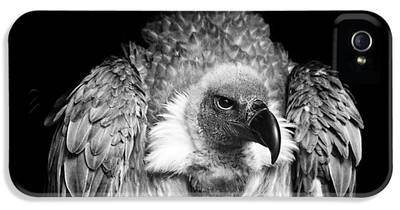Vulture IPhone 5s Cases
