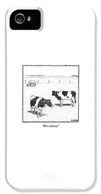 Cow iPhone 5s Cases
