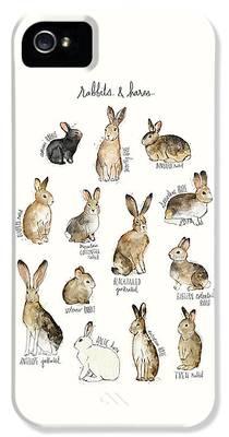 Rabbit iPhone 5s Cases