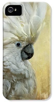 Cockatoo iPhone 5s Cases