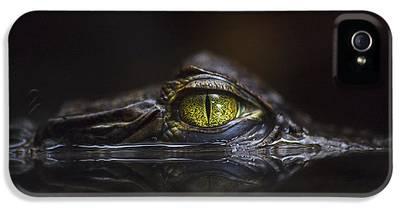 Alligator IPhone 5s Cases