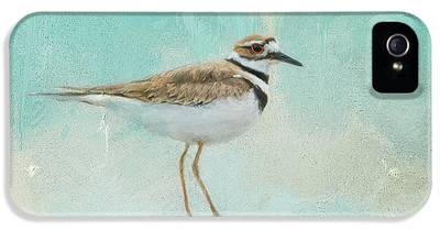 Killdeer IPhone 5s Cases