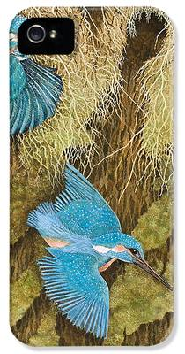 Kingfisher iPhone 5s Cases