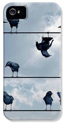 Blackbird iPhone 5s Cases