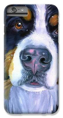 Bernese Mountain Dog  IPhone 6 Plus Cases