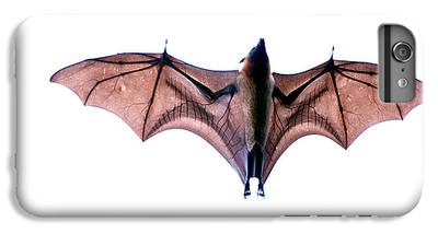 Bat IPhone 6 Plus Cases