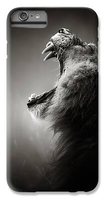 Lion Head iPhone 6 Plus Cases