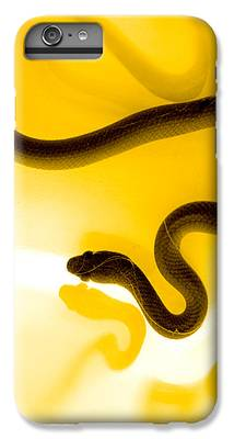 Reptile IPhone 6 Plus Cases