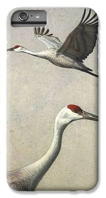Stork iPhone 6 Plus Cases