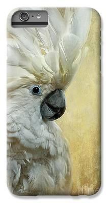 Cockatoo iPhone 6 Plus Cases