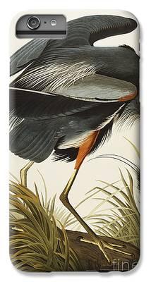 Heron iPhone 6 Plus Cases