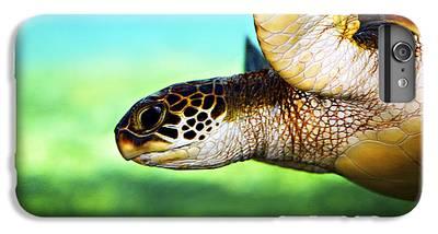 Turtle iPhone 6 Plus Cases
