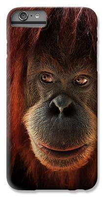 Orangutan IPhone 6 Plus Cases
