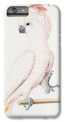 Parakeet iPhone 6 Plus Cases