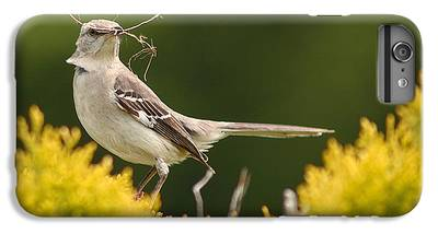 Mockingbird iPhone 6 Plus Cases