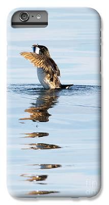 Auklets iPhone 6 Plus Cases