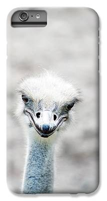Ostrich iPhone 6 Plus Cases