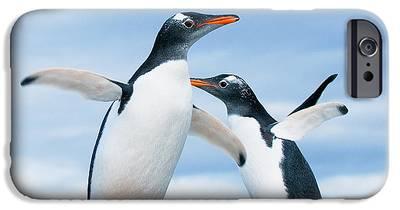 Penguin IPhone 6s Cases