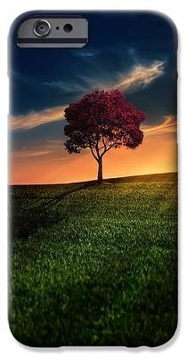 Tree Photographs iPhone 6s Cases