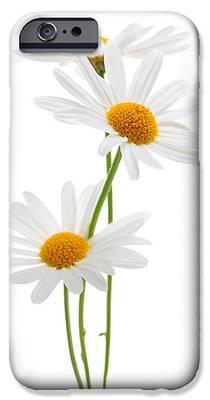 Daisies iPhone 6s Cases