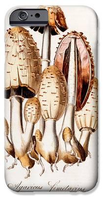 Mushroom iPhone 6s Cases