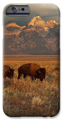 Buffalo iPhone 6s Cases