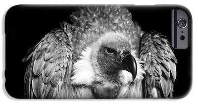 Vulture IPhone 6s Cases