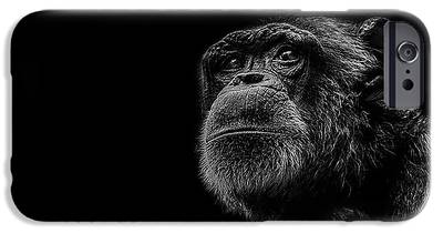 Chimpanzee iPhone 6s Cases