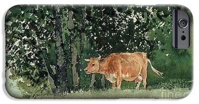 Cow iPhone 6s Cases
