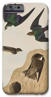 Swallow iPhone 6s Cases