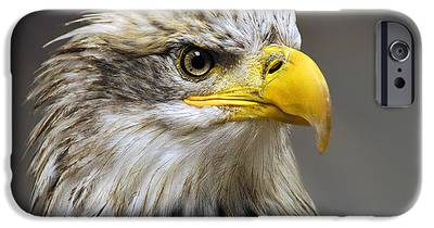 Eagle IPhone 6s Cases