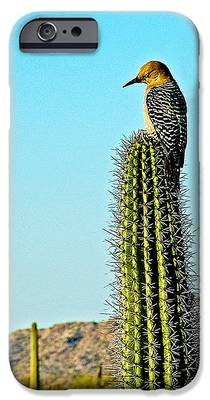 Woodpecker iPhone 6s Cases