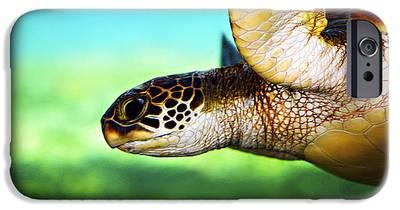 Reptiles iPhone 6s Cases